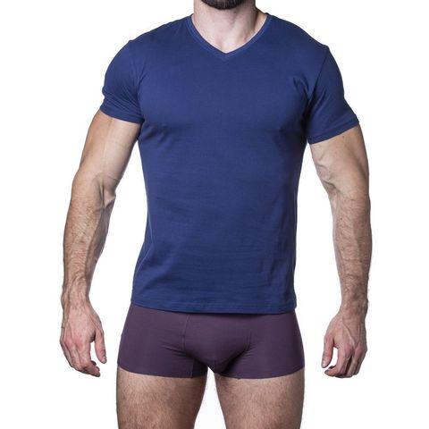 Мужская футболка синяя Sergio Dallini SDT751-4