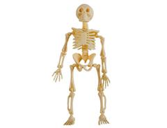 Скелет пластик 13 см, 3 шт, 1 уп.