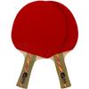 Ракетка для настольного тенниса Donier SP-12 PRO