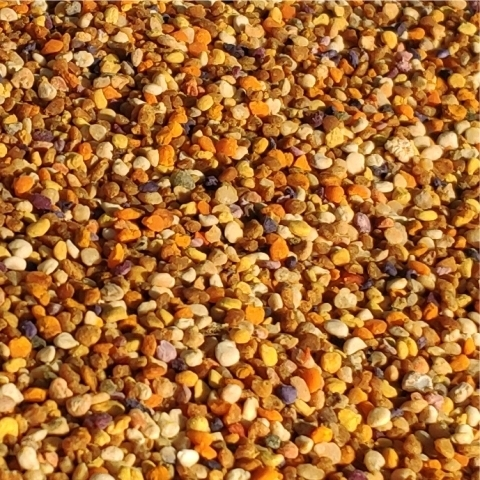Пыльца цветочная (обножка) 100 грамм