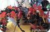 Колумнея, Crazy Carnival