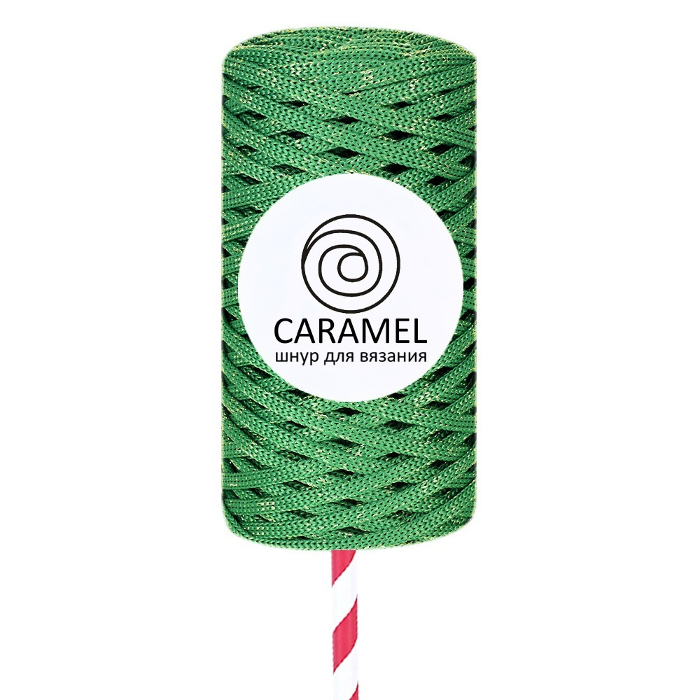 Плоский полиэфирный шнур Caramel Полиэфирный шнур Caramel Diamond Кедр 12-1000x1000_1_.jpg