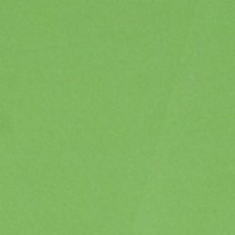 Фоамиран (лист: 60х70см, толщина 0,8 мм) Цвет:темно-зеленый (179-016)