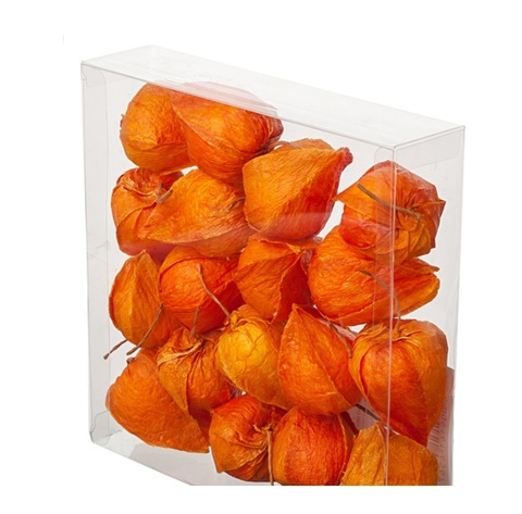 Набор физалиса искусственного 18шт., D3,5х4см, цвет:оранжевый