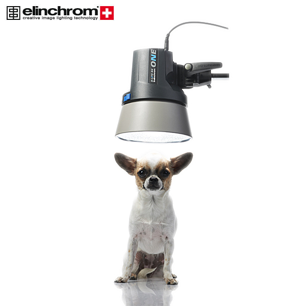 Elinchrom D-Lite One RX Head