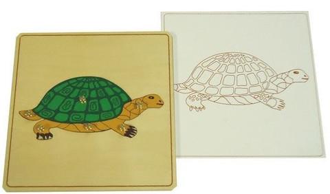 Строение черепахи пазл