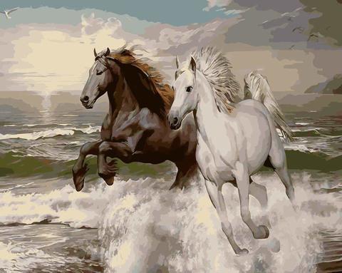 Картина раскраска по номерам 50x65 Черный и белый конь на берегу моря