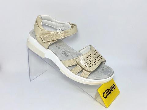 Clibee Z603 Gold 31-36