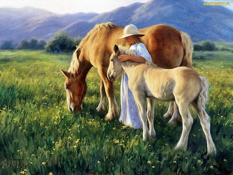 Картина раскраска по номерам 50x65 Девушка и лошади
