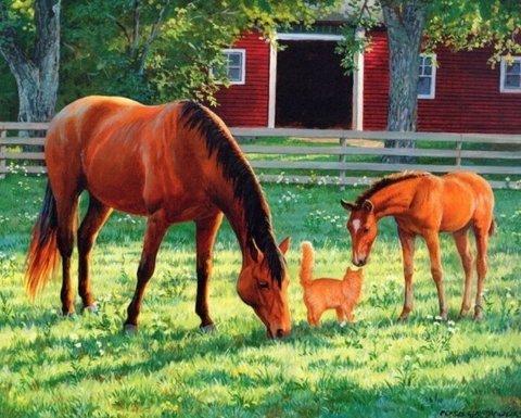 Картина раскраска по номерам 50x65 Лошади и котенок