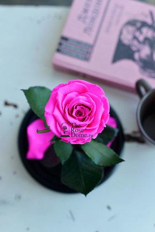 Роза в колбе Mini ОПТОМ Выс*Диам*Бутон (22*12.5*6см), Цвет ярко-розовая