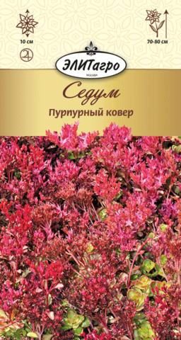 Семена Седум (Очиток)  Пурпурный ковер, мнг