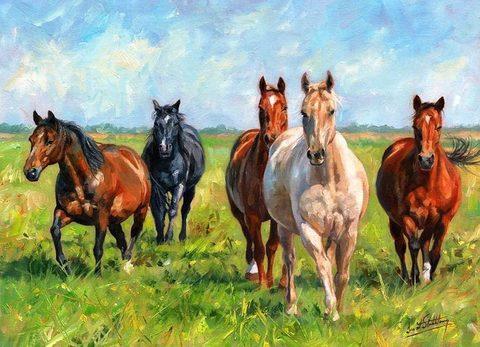 Картина раскраска по номерам 50x65 Лошади на прогулке