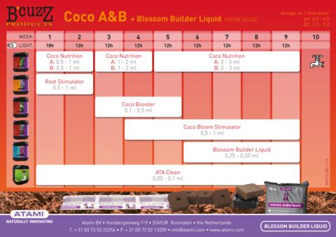 ATAMI B'cuzz Coco A+B 5 л