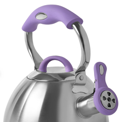 Чайник для кипячения воды BONNIE 2,2л (нерж.сталь)