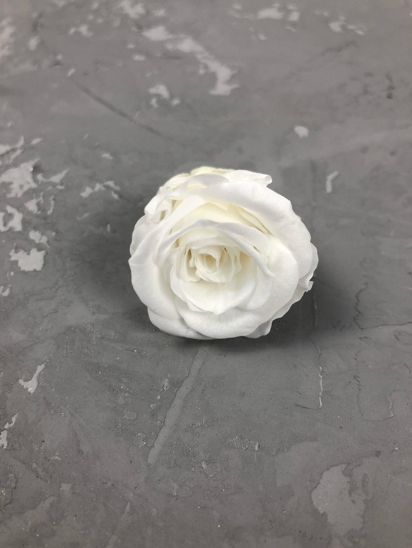 Роза классическая белая d=2-3 см