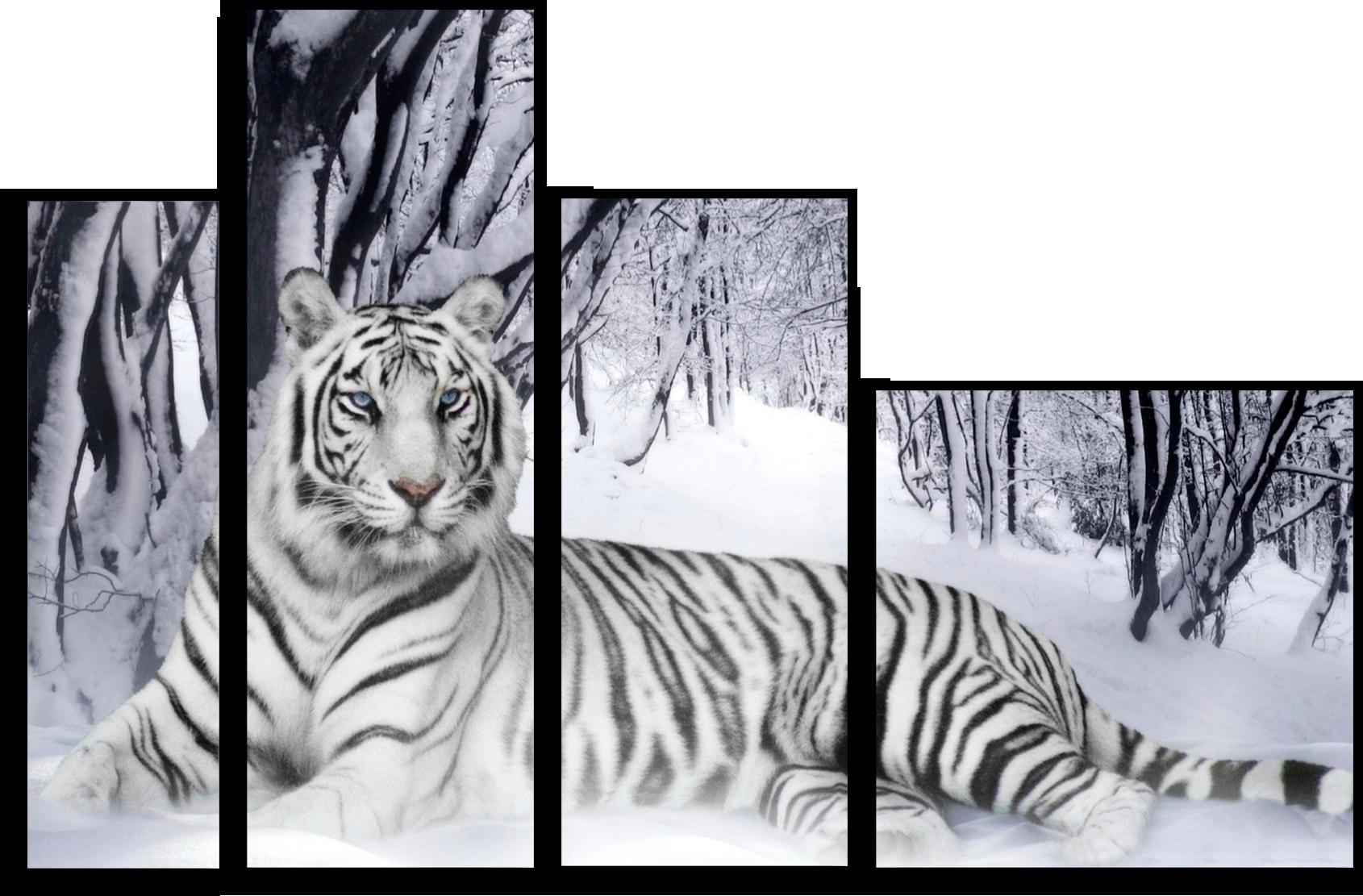"""Модульные картины Модульная картина """"Белый тигр"""" М42.png"""