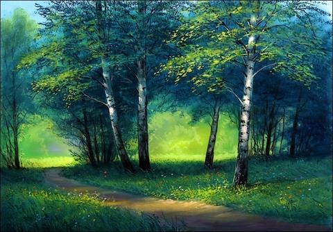 Картина раскраска по номерам 50x65 Тропинка в вечернем лесу