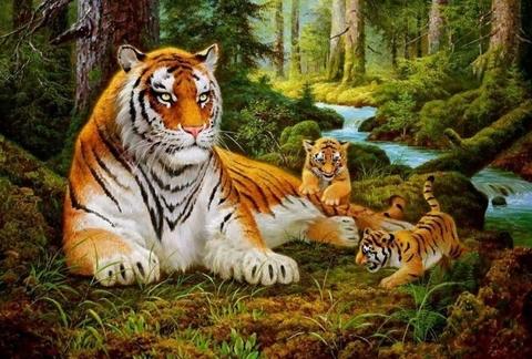 Алмазная Мозаика 30x40 Тигрята играют у тигрицы