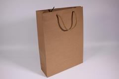 Пакет подарочный крафт однотонный 19х24х8, 1 шт.