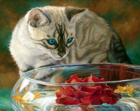 Картина раскраска по номерам 50x65 Кошка наблюдает за аквариумом