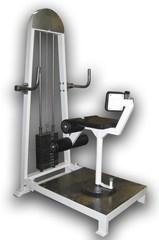 Торс-машина (70 кг) PROFI.
