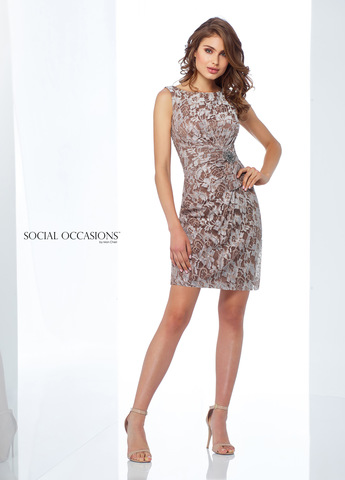Social Occasions 118868