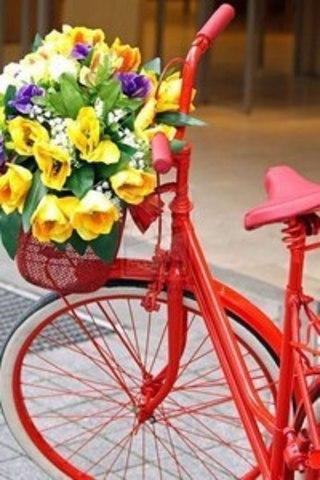 Картина раскраска по номерам 50x65 Велосипед с корзиной цветов (арт. RA3679)