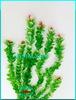 Растение Атман AP-043I, 50см