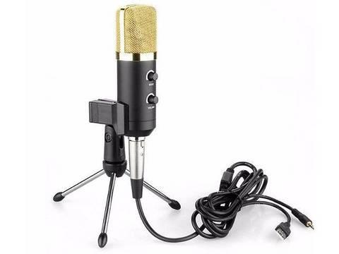 Микрофон с Фантомным Питанием MK F100TL