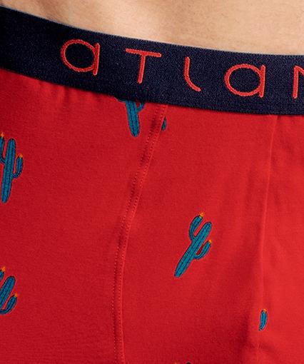 Трусы мужские шорты 2GMH-001 хлопок. Набор из 2 шт.