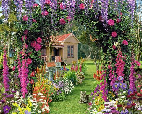 Картина раскраска по номерам 50x65 Кот отдыхает у цветов