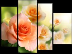 """Модульная картина""""Персиковые розы"""""""