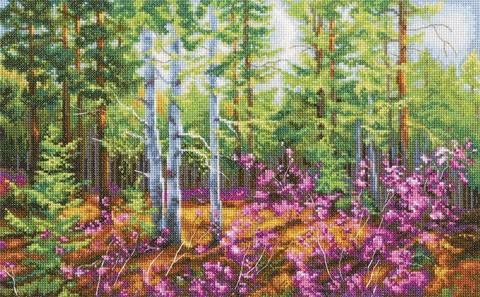 Коллекция:Пейзаж¶Название по-английски:Wild rosemary¶Название по-русски:Багульник¶Размер кадра, с