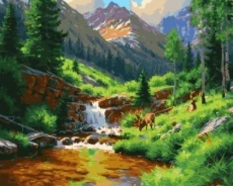 Картина раскраска по номерам 50x65 Водопад на воне гор