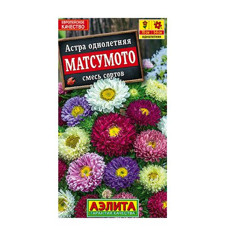 Астра Матсумото, смесь окрасок (Аэлита)