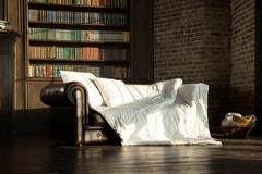 Одеяло пуховое 220x240 «Camel Grass»