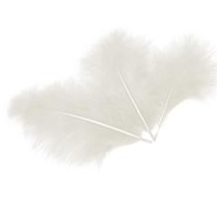Перья, Белый, 10*15 см, 30 шт.