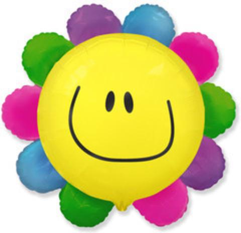 F Цветик - многоцветик (солнечная улыбка), 29