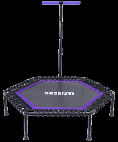 Батут TR-401 122 см с держателем, фиолетовый