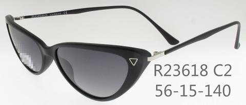R23618C2