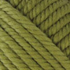 853 (Зеленая черепаха)
