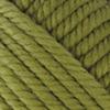 Пряжа Nako Pure Wool Plus 853  (зеленая черепаха)