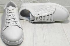 Перфорированные кроссовки кеды кожаные женские Evromoda 141-1511 White Leather.