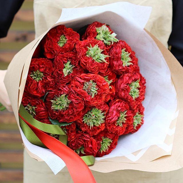 Купить необычный пионовидные красные розы Ред Ай в Перми