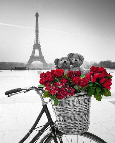 Алмазная Мозаика 30x40 Красные розы в корзине на фоне Эйфелевой башни