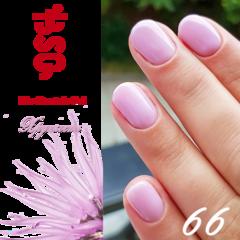 BSG №66 Хрупкость