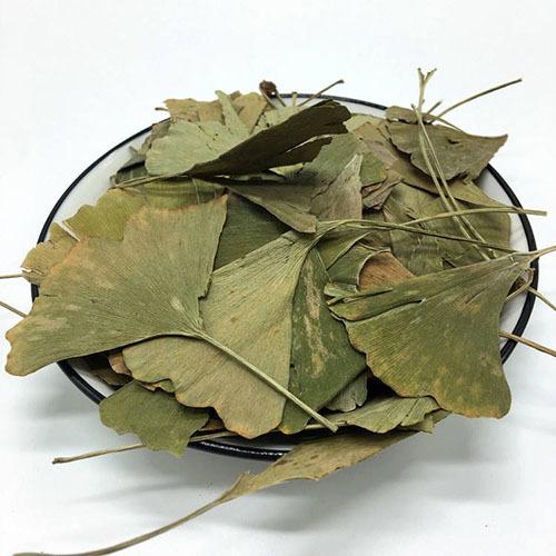 Травы Гинкго Билоба ginkgo-1.jpg