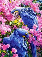 Картина раскраска по номерам 30x40 Синие птицы в розовых цветах