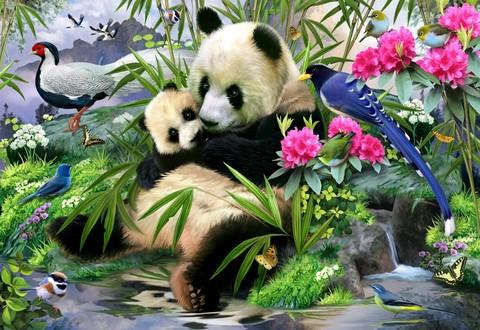 Алмазная Мозаика 30x40 Панды отдыхают среди птиц